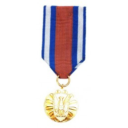 """Medal for """"Merit in..."""